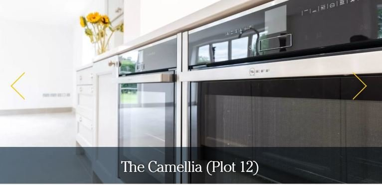 The camellia cooker