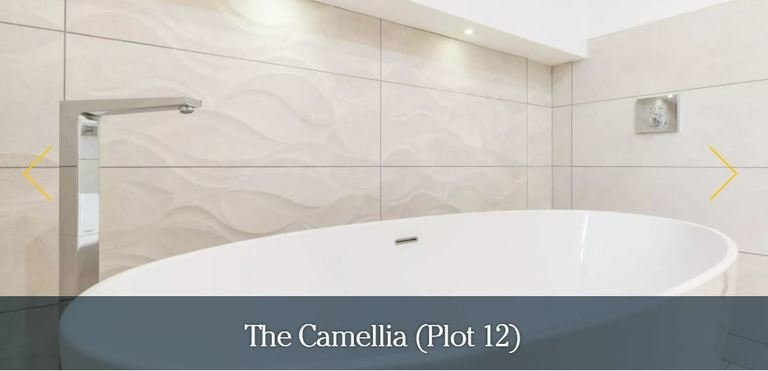 The camellia bath